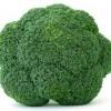 broccoli 100x100 Alimentatia pe perioada sarcinii